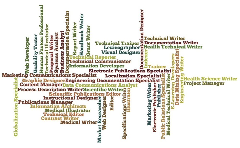 A Visualization of the Many Job Opportunities Available to PTW Graduates